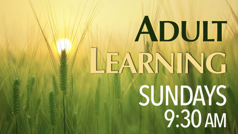 RLC Adult Learning on Sundays at 9:30 a.m.