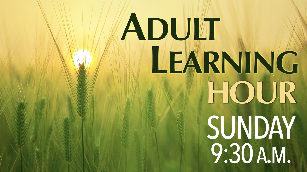 RLC Adult Learning Hour Sundays at 9:30 a.m.