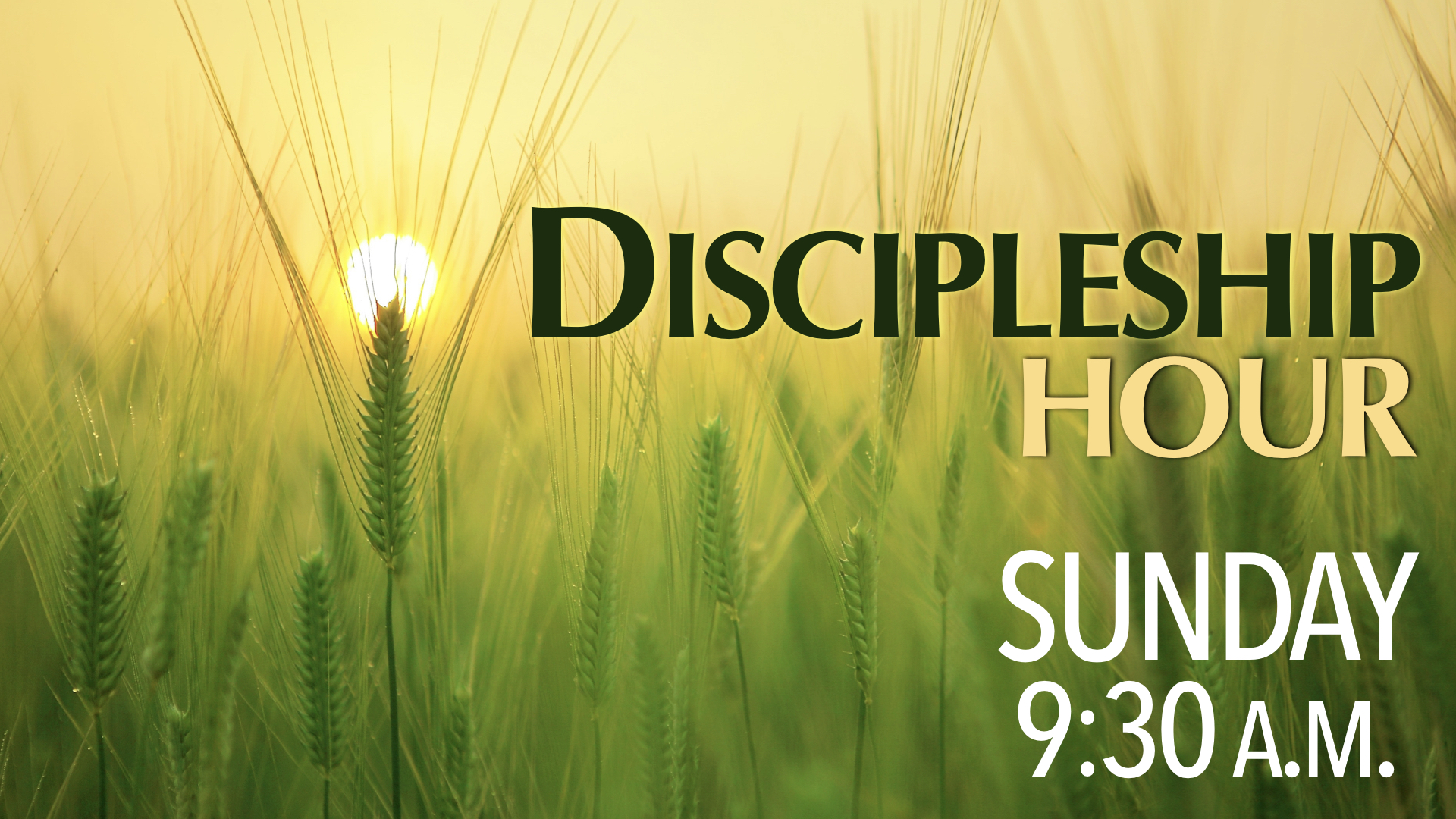 Sunday Discipleship Hour at 9:30 a.m.