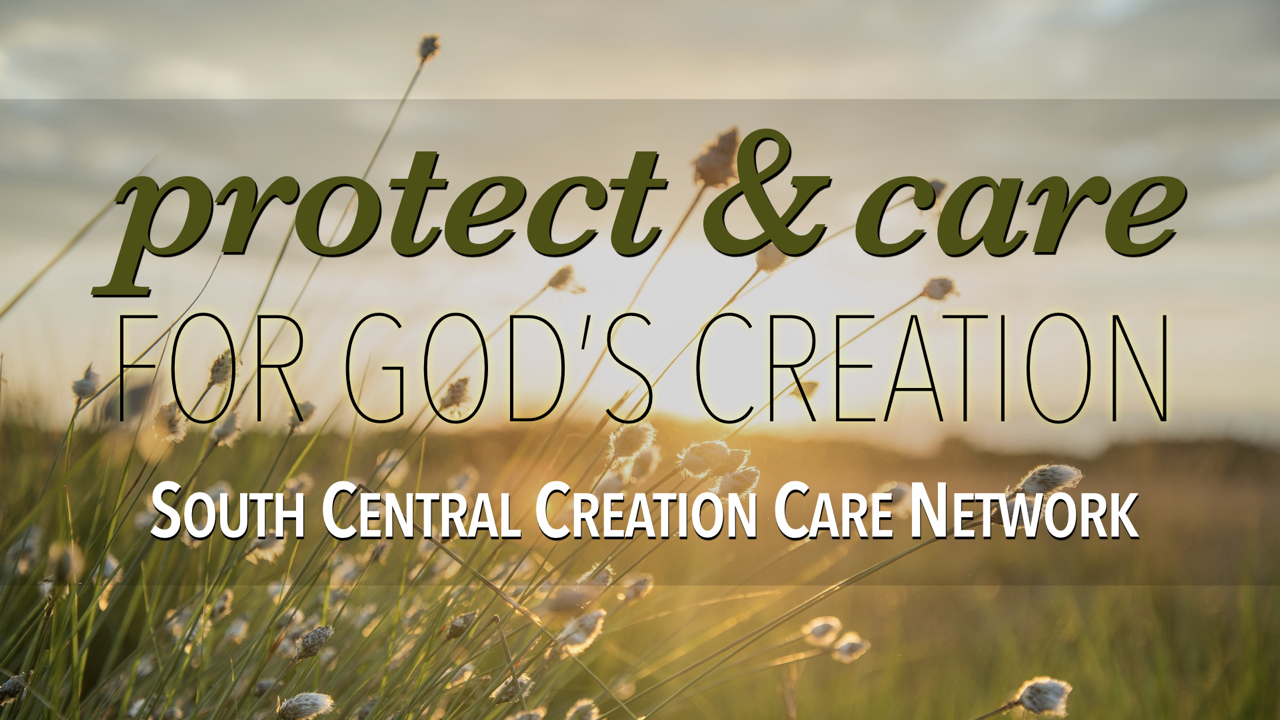 Protect and Care for God's Creation with South Central Creation Care Network