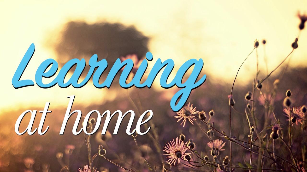 RLC Fall 2020 Learning at Home