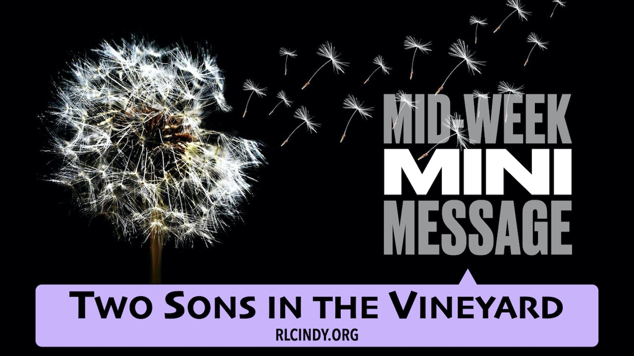 Mid-week Mini Message for RLC Kids: Two Sons in the Vineyard