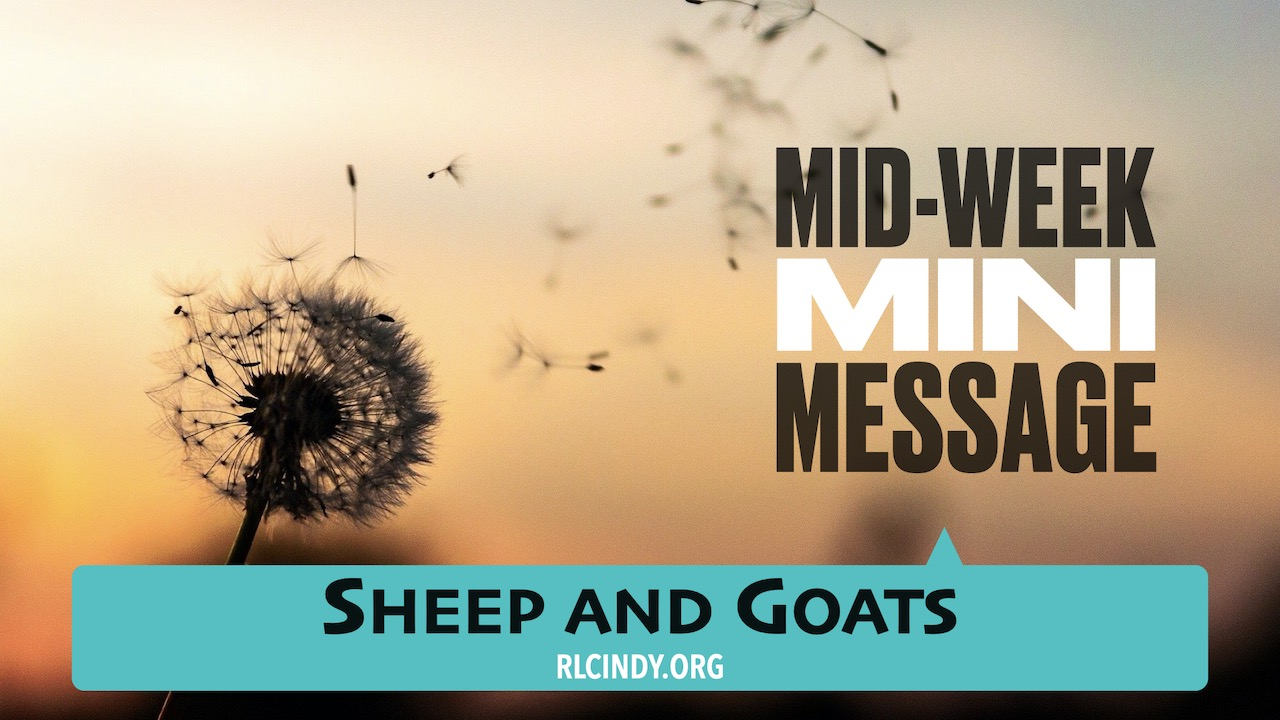 Mid-week Mini Message for RLC Kids: Sheep and Goats