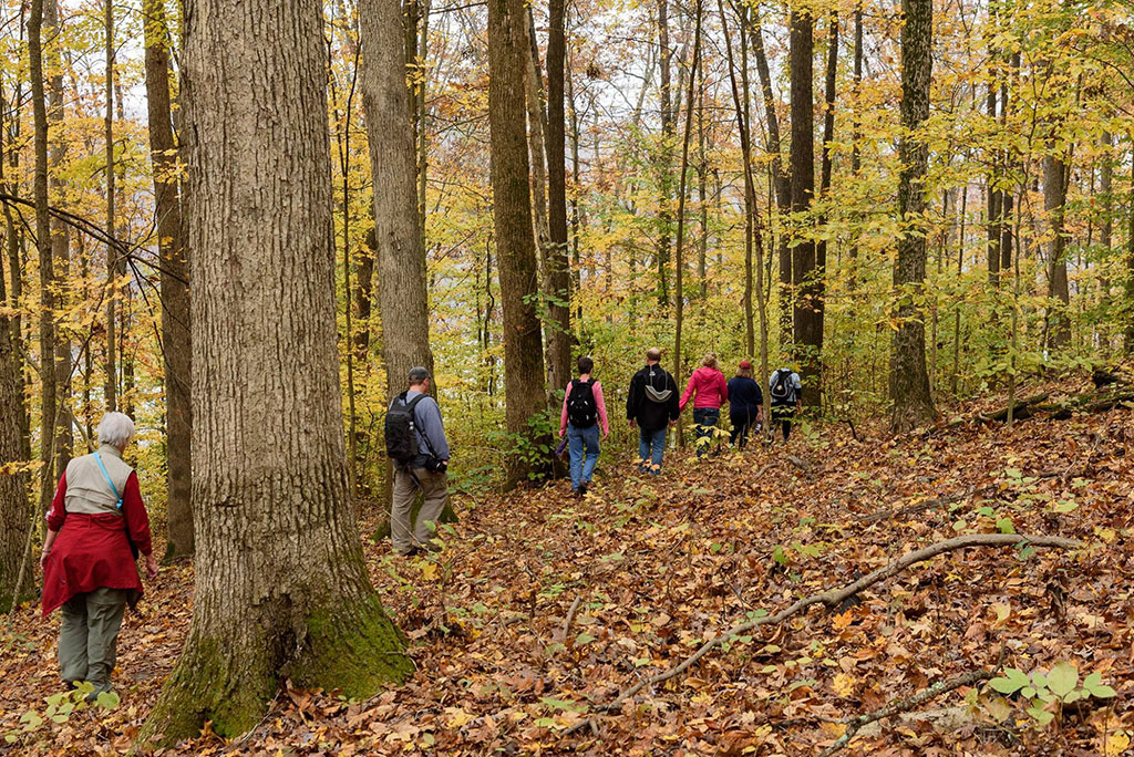 Hiking group on a fall hike